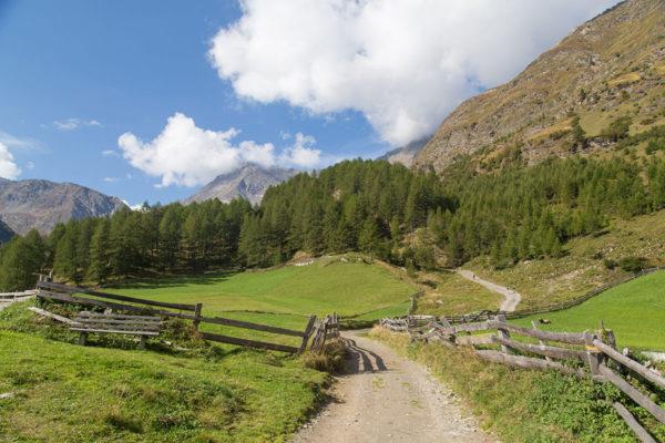 Dicktnerhof-Pfelder-Urlaub-auf-dem-Bauernhof-040